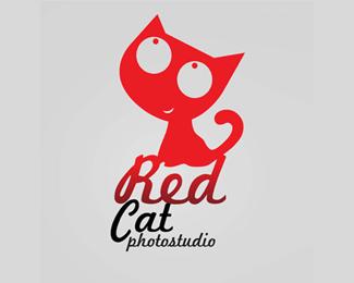 cat-19